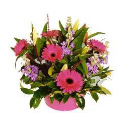 sepet içerisinde mevsim çiçeklerinden aranjman  Gölbaşı ucuz çiçek gönder