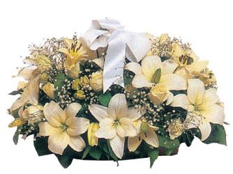 Ankara çiçekçi Gölbaşı İnternetten çiçek siparişi  Lilyum ve 7 adet beyaz gül sepeti