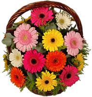 Sepet içerisinde sicak sevgi çiçekleri  ankara Gölbaşı çiçek mağazası , çiçekçi adresleri