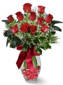 9 adet gül  Gölbaşı çiçek siparişi yurtiçi ve yurtdışı çiçek siparişi  kirmizi gül