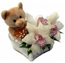 Ankara Gölbaşı çiçekçi uluslararası çiçek gönderme  15 cm boyutlarinda ayicik ve 1 kandil orkide