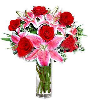 Ankara Gölbaşı çiçekçi uluslararası çiçek gönderme  1 dal cazablanca ve 6 kırmızı gül çiçeği