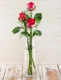 Cam içerisinde 3 kırmızı gül  Ankara Gölbaşı hediye sevgilime hediye çiçek