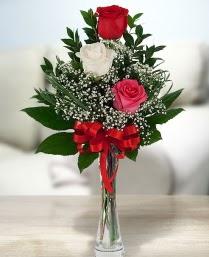 Camda 2 kırmızı 1 beyaz gül  Gölbaşı ankara çiçek servisi , çiçekçi adresleri