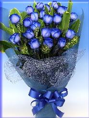 19 adet eşsiz mavi gül buketi  Gölbaşı çiçekçi telefonları