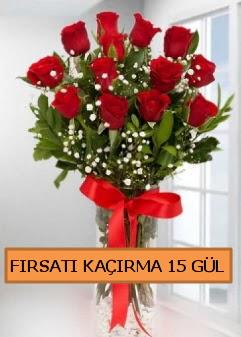 15 İthal kırmızı gül büyük başlı orjinal  Gölbaşı çiçekçi güvenli kaliteli hızlı çiçek