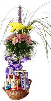 Gölbaşı ucuz çiçek gönder  Mevsim çiçekleri ve çikolata