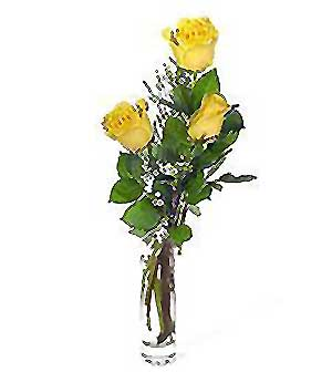 Gölbaşı çiçek yolla , çiçek gönder , çiçekçi   3 adet kalite cam yada mika vazo gül