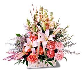 Gölbaşı çiçekçi güvenli kaliteli hızlı çiçek  mevsim çiçekleri sepeti özel tanzim