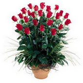Gölbaşı çiçekçi telefonları  10 adet kirmizi gül cam yada mika vazo