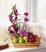 Ankara Gölbaşı çiçek gönderme  çiçek ve meyve sepeti