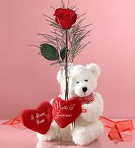 tek gül ve oyuncak pelus  Ankara Gölbaşı 14 şubat sevgililer günü çiçek