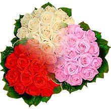 3 renkte gül seven sever   Gölbaşı çiçek online çiçek siparişi