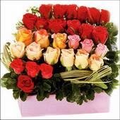 15 adet renkli gül ve cam   Gölbaşı çiçek kaliteli taze ve ucuz çiçekler