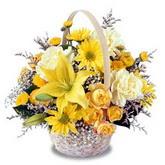 sadece sari çiçek sepeti   Gölbaşı çiçek gönder cicekciler , cicek siparisi