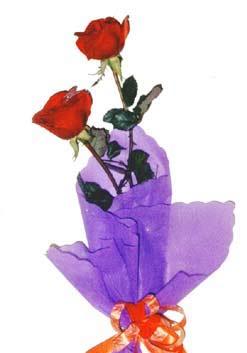 2  adet kirmizi gül buketi   Gölbaşı çiçek online çiçek siparişi