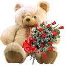 kocaman ayicik ve 10 gül   Gölbaşı çiçek online çiçek siparişi