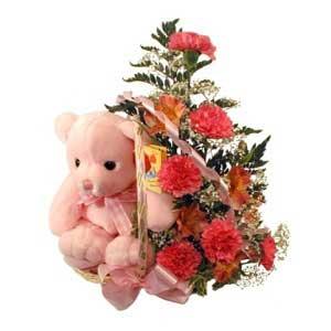 sepette karanfiller ve ayicik   Gölbaşı çiçek online çiçek siparişi