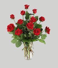 Ankara Gölbaşı çiçek gönderme  11 adet kirmizi gül vazo halinde