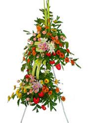 çift katli perförje çiçegi  Gölbaşı çiçek kaliteli taze ve ucuz çiçekler