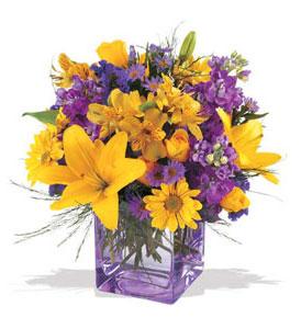 Gölbaşı çiçekçiler  çiçek siparişi sitesi  cam içerisinde kir çiçekleri demeti