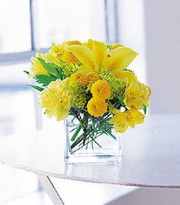 Gölbaşı ankara çiçek servisi , çiçekçi adresleri  sarinin sihri cam içinde görsel sade çiçekler