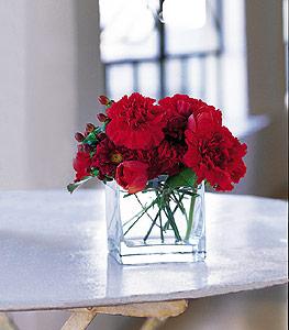 Gölbaşı ankara çiçek servisi , çiçekçi adresleri  kirmizinin sihri cam içinde görsel sade çiçekler