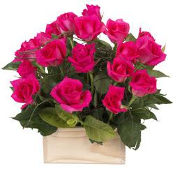 12 adet pembe güllerden sepet tanzimi  Ankara Gölbaşı internetten çiçek siparişi