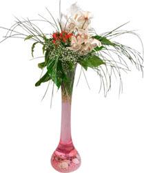 Çiçek yolla Gölbaşı internetten çiçek satışı  Filayagi cam vazo içerisinde orkide ve güllerle ha