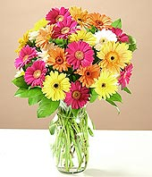 Ankara Gölbaşı hediye çiçek yolla  17 adet karisik gerbera