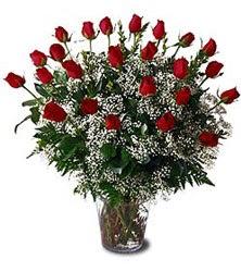 Gölbaşı çiçekçi güvenli kaliteli hızlı çiçek  Cam yada mika vazo içerisinde 15 adet kirmizi güller,cipsofi