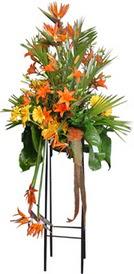 Gölbaşı çiçekçi güvenli kaliteli hızlı çiçek  perförje tanzimi dügün nikah ve açilislara