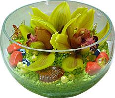 Gölbaşı Ankara çiçek yolla  3 adet cam içerisinde kandil orkide