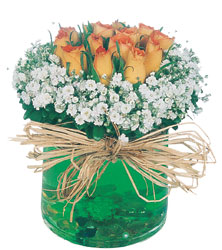 Gölbaşı çiçek siparişi yurtiçi ve yurtdışı çiçek siparişi  Cam yada mika içerisinde 9 adet  gül aranjmani