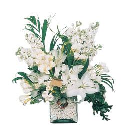 Gölbaşı çiçek yolla , çiçek gönder , çiçekçi   sadece beyazlardan olusmus mevsim cam yada mika tanzim