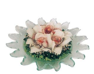 Gölbaşı ucuz çiçek gönder  Cam içerisinde 3 adet kandil orkide