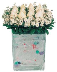 Gölbaşı çiçek kaliteli taze ve ucuz çiçekler  7 adet beyaz gül cam yada mika vazo tanzim