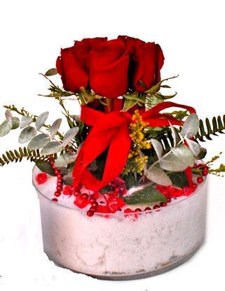 Ankara Gölbaşı hediye çiçek yolla  SEVMEK GÜZEL DIYENLERE 7 ADET GÜL