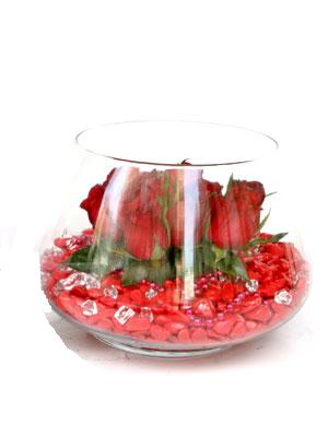 Gölbaşı anneler günü çiçek yolla  9 adet kirmizi gül cam fanus içerisinde