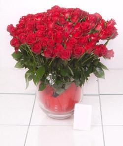 Gölbaşı Ankara çiçek yolla  101 adet kirmizi gül