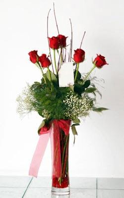 Ankara Gölbaşı çiçek gönderme  6 adet kirmizi gül ve cam yada mika vazo