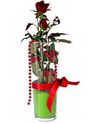 Gölbaşı ankara çiçek gönderme sitemiz güvenlidir  Cam yada mika içerisinde 9 adet kirmizi gül - sevdiklerinize özel
