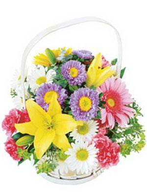 Ankara Gölbaşı çiçek siparişi vermek  Mevsim sepeti karisik mevsim çiçekleri