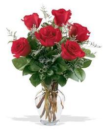 Gölbaşı çiçek gönder cicekciler , cicek siparisi  7 adet kirmizi gül cam yada mika vazoda sevenlere