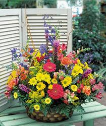 Gölbaşı ucuz çiçek gönder  karisik mevsim sepet çiçegi
