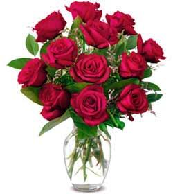 Gölbaşı ankara çiçek gönderme sitemiz güvenlidir  1 düzine kirmizi gül sevenlere özel vazo gülleri