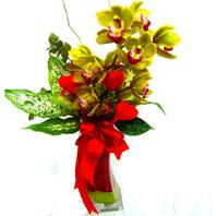 Gölbaşı çiçekçi telefonları  1 adet dal orkide ve cam yada mika vazo tanzim
