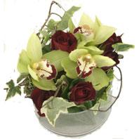 Çiçek yolla Gölbaşı internetten çiçek satışı  1 kandil orkide ve 5 adet kirmizi gül