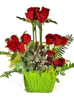 Ankara Gölbaşı çiçek gönderme  Çiçek siparisi 9 adet kirmizi gül