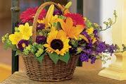 Gölbaşı çiçek online çiçek siparişi  Karisik mevsim çiçeklerinden sepet tanzimi